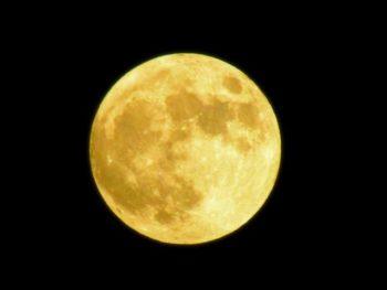 財布 使い始め 新月 満月