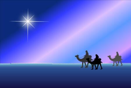 ポインセチア クリスマス