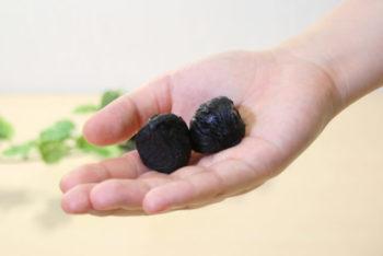黒にんにく 栄養成分