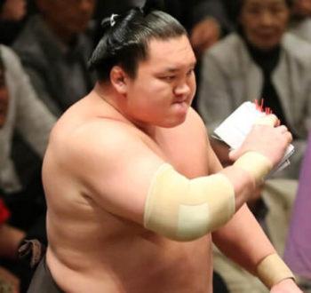 大相撲 懸賞 最高本数