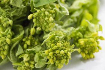 ちらし寿司 具材 菜の花