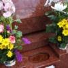 お墓参り 花 種類