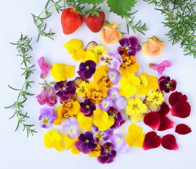 にんにくの花 食べられる