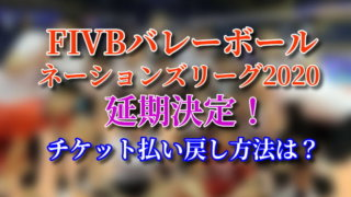 FIVBバレーボールネーションズリーグ2020 延期 チケット 払い戻し方法
