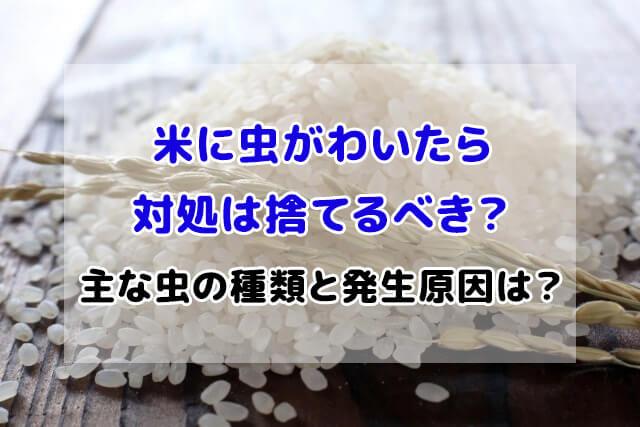 米 虫がわいたら 対処 捨てる
