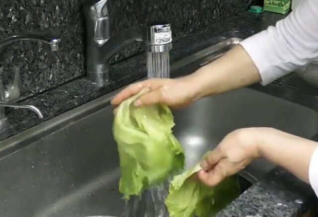 レタス 変色防止 洗い方