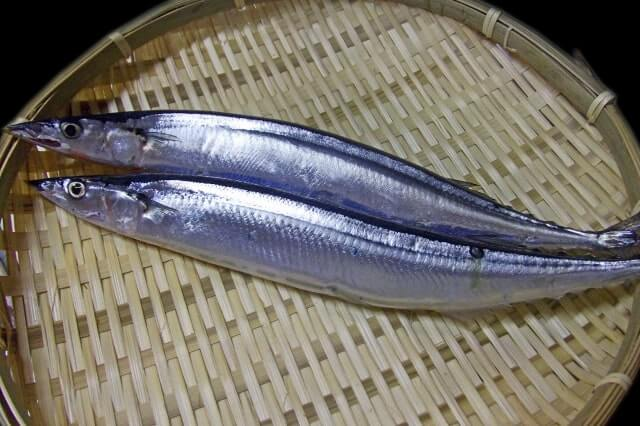秋刀魚 値段 2020 旬 秋
