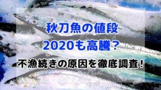 秋刀魚 値段 2020 不漁続き 原因