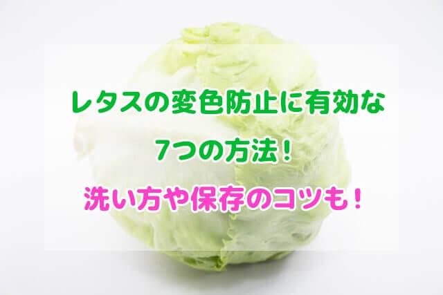 レタス 変色防止 洗い方 保存