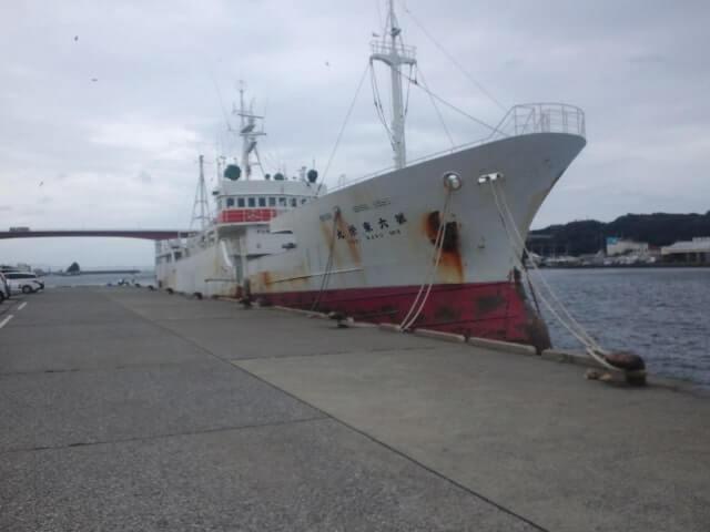 秋刀魚 不漁続き 原因 中国 台湾 乱獲