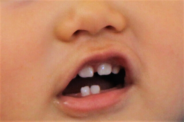 鏡餅 意味 歯固め
