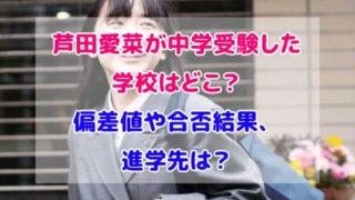 芦田愛菜 中学受験  どこ