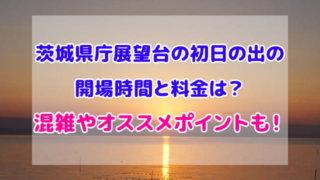 茨城県庁 展望台 初日の出