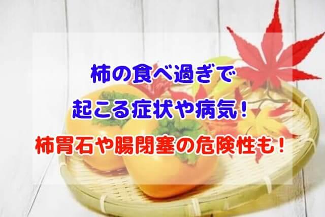 柿 食べ過ぎ 症状 病気