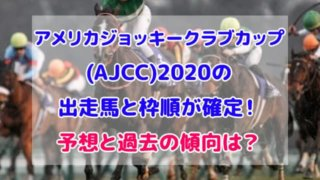 アメリカジョッキークラブカップ 2020 出走馬 枠順 確定 予想
