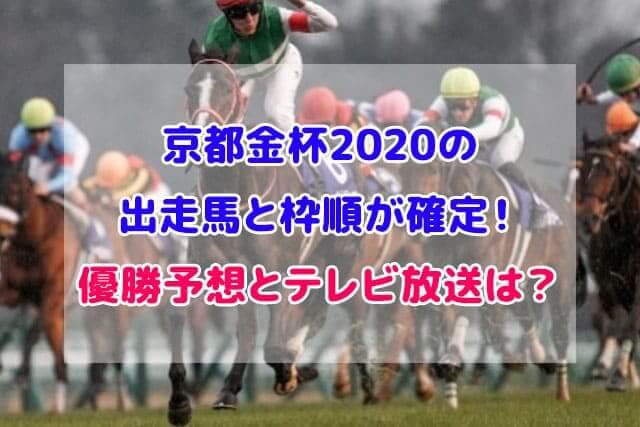 京都金杯 2020 出走馬 枠順 確定
