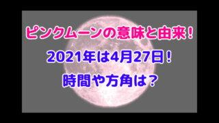 ピンクムーン 意味 由来 2021 時間 方角