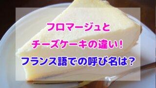 フロマージュ チーズケーキ 違い