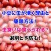 小豆 虫が湧く 理由 駆除 食べられる 予防