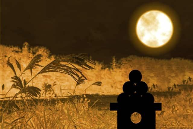 中秋の名月 高さ