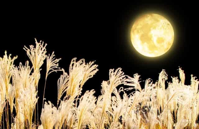 中秋の名月 読み方 意味