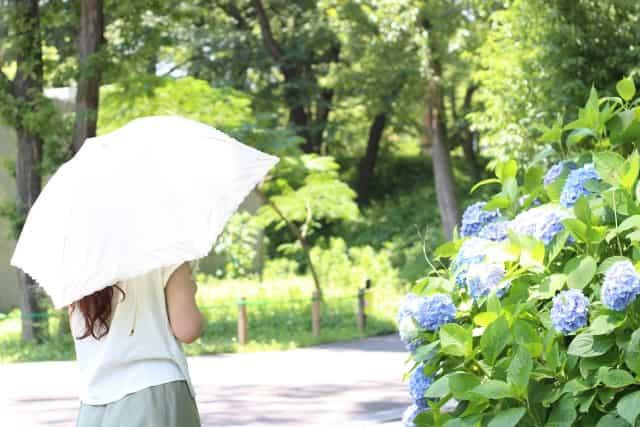 白 日傘 効果 迷惑