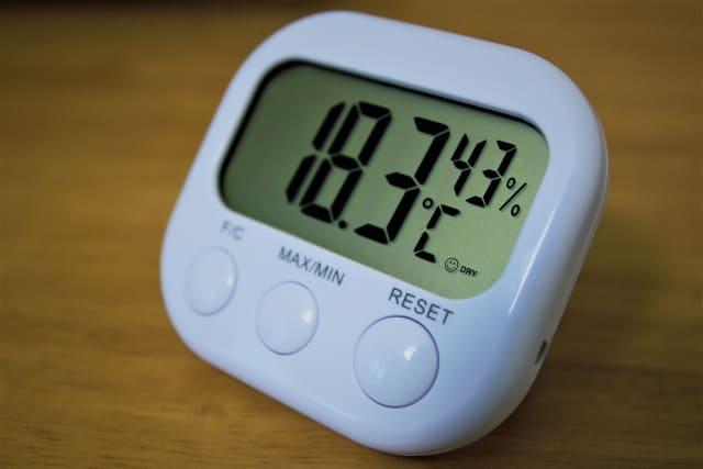 生姜 カビ 原因 温度 湿度